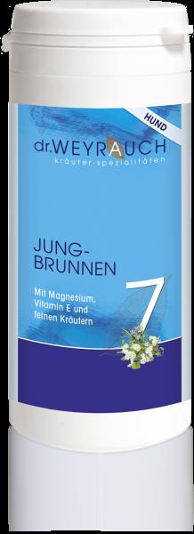 Nr. 7 Jungbrunnen