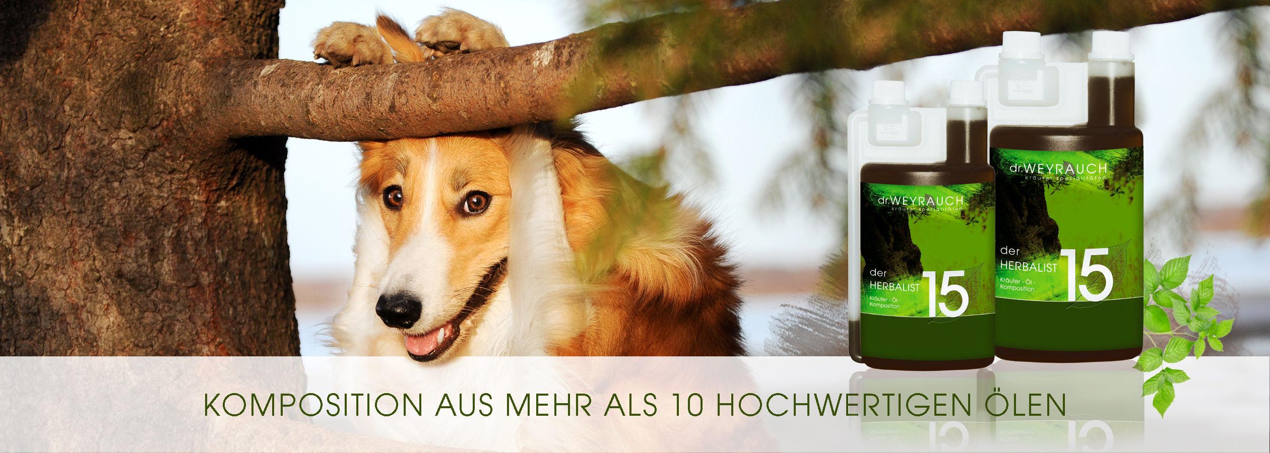 HEADER-2017-Herbalist-Hund