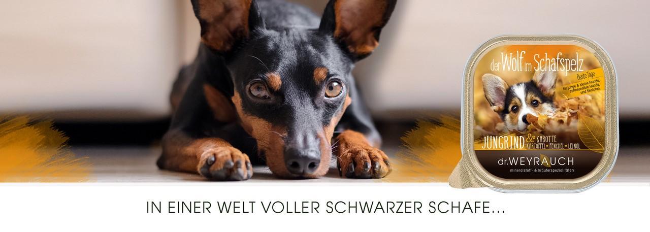 Wolf-im-Schafspelz-Header-200-Gramm