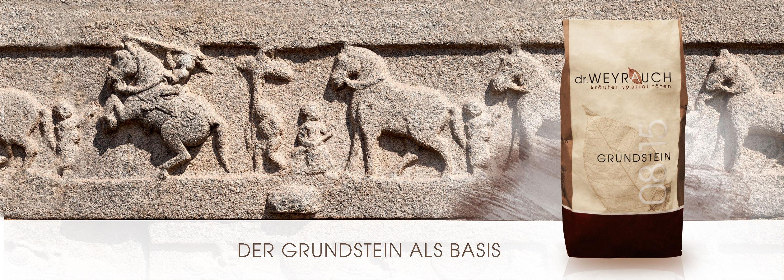 HEADER-2017-Grundstein-Pferd