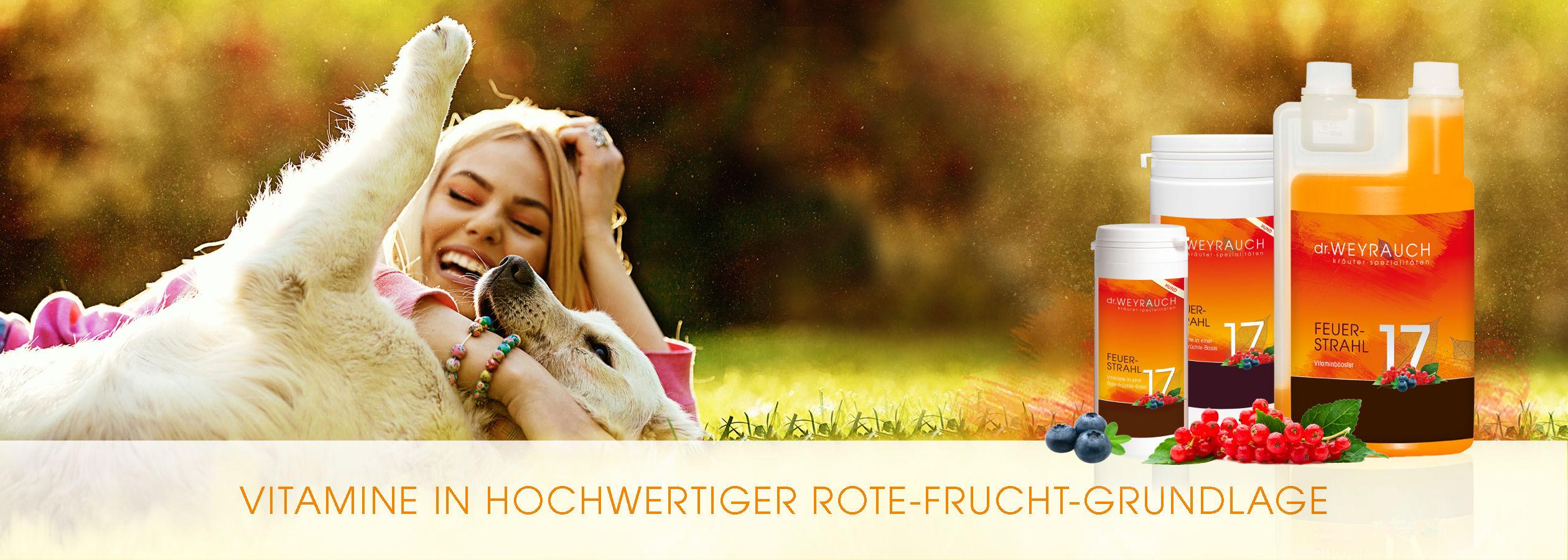 HEADER-2017-Feuerstrahl-Hund