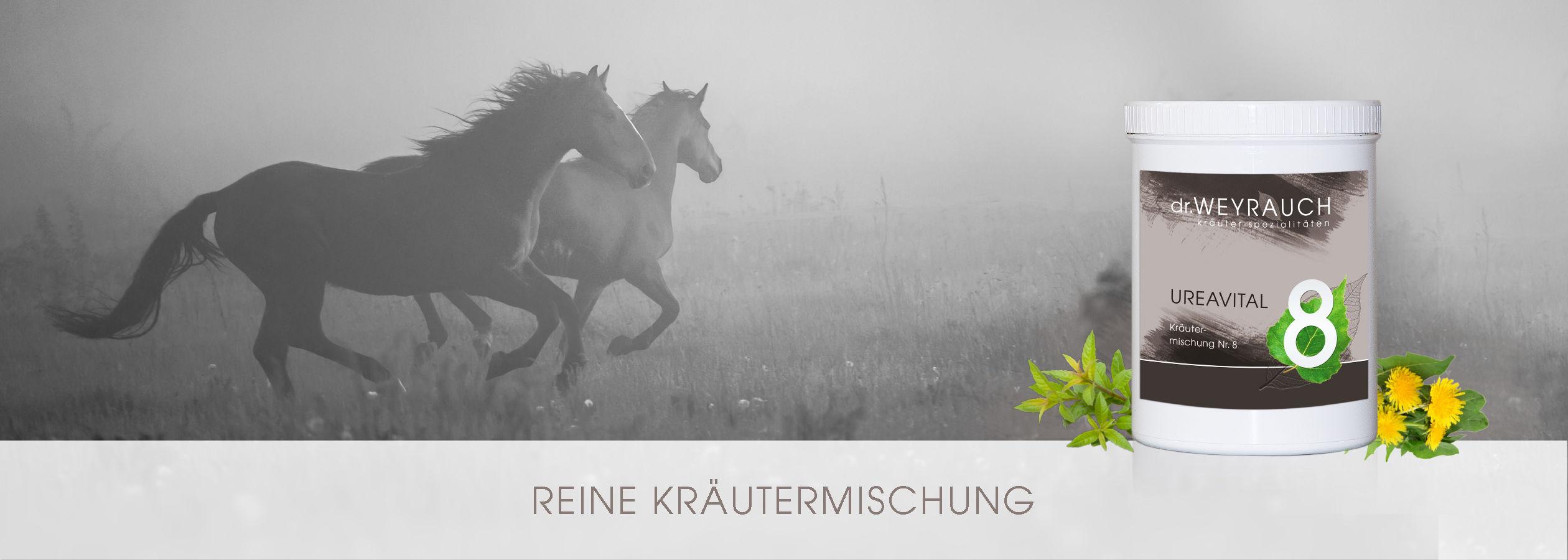HEADER-2017-Urea-Vital-Pferd