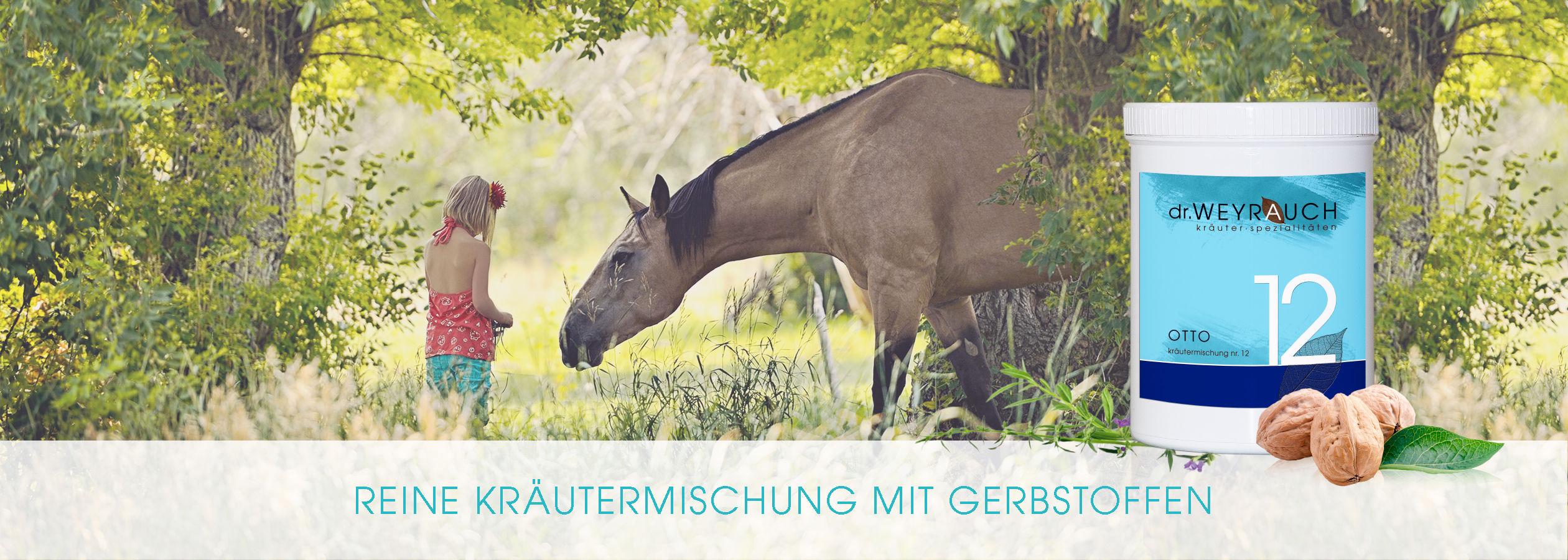 HEADER-2017-Otto-Pferd